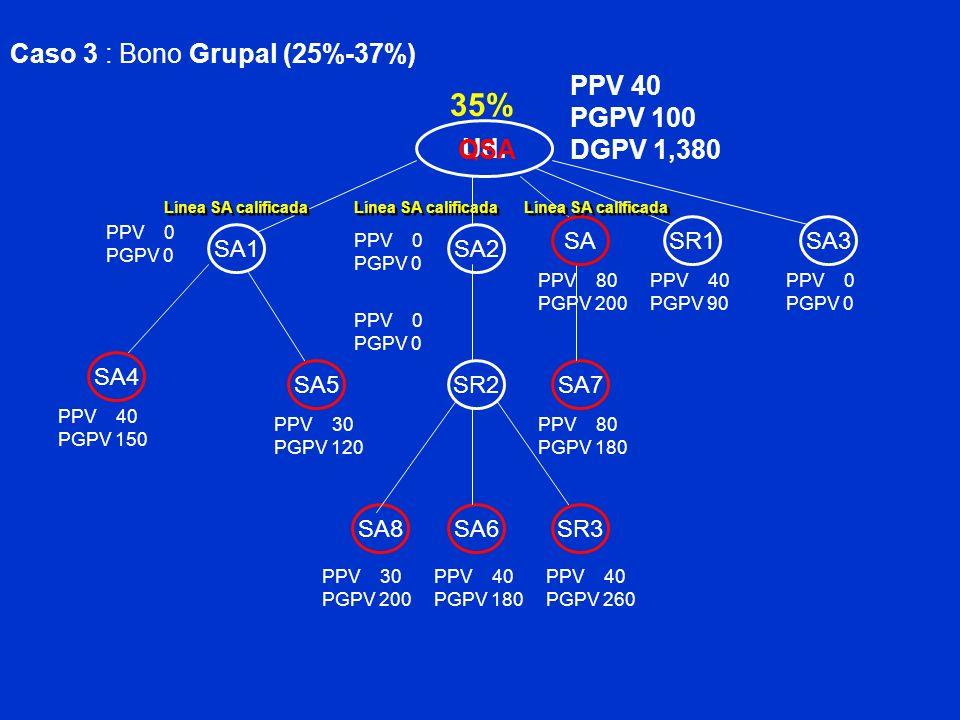 Ud. SA2 SR1 PGPV 100 Caso 3 : Bono Grupal (25%-37%) SA1 SA3 SA4 SA5SR2SA7 SA6SR3SA8 SA PPV 40 PPV 30 PGPV 200 PPV 40 PGPV 180 PPV 40 PGPV 260 PPV 40 P