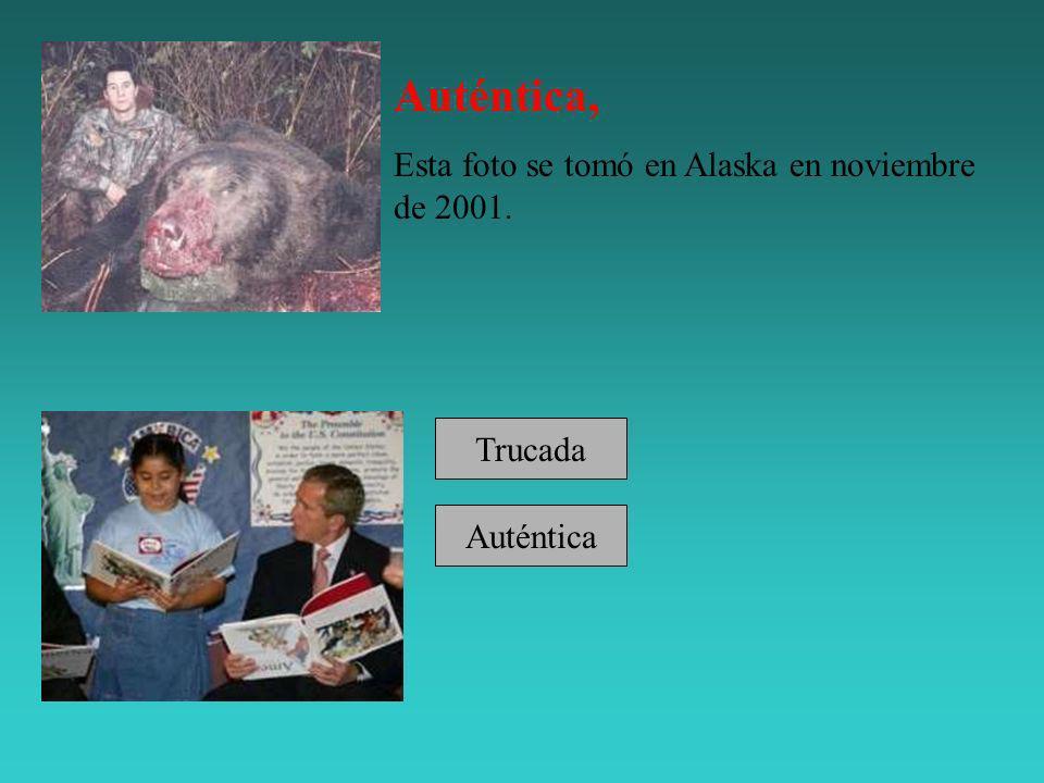 Auténtica, Esta foto se tomó en Alaska en noviembre de 2001. Trucada Auténtica