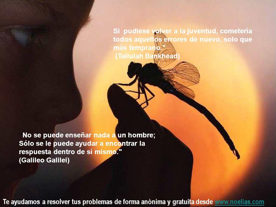 Te ayudamos a resolver tus problemas de forma anónima y gratuita desde www.noelias.comwww.noelias.com Si pudiese volver a la juventud, cometería todos aquellos errores de nuevo, solo que más temprano. (Tallulah Bankhead) No se puede enseñar nada a un hombre; Sólo se le puede ayudar a encontrar la respuesta dentro de sí mismo. (Galileo Galilei)
