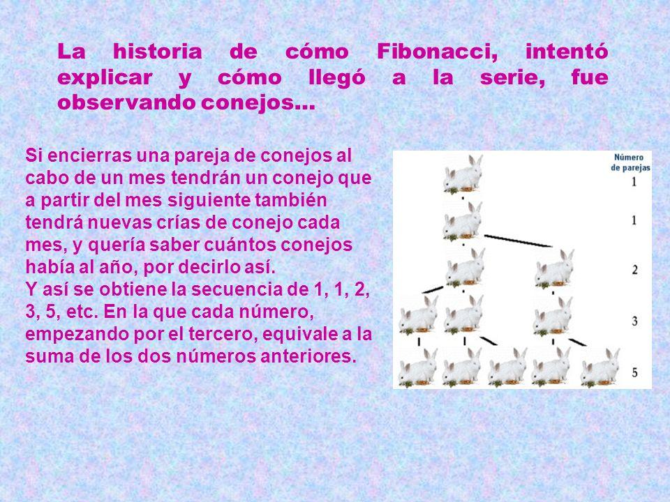Una serie sorprendente … Es la serie de Fibonacci… 1, 1, 2, 3, 5, 8, 13, 21, 34 … Añadiendo los últimos dos, siempre se consigue el siguiente