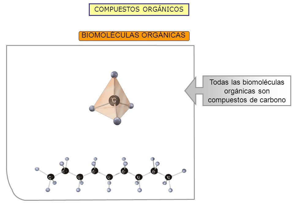 BIOMOLÉCULAS ORGÁNICAS COMPUESTOS ORGÁNICOS Todas las biomoléculas orgánicas son compuestos de carbono