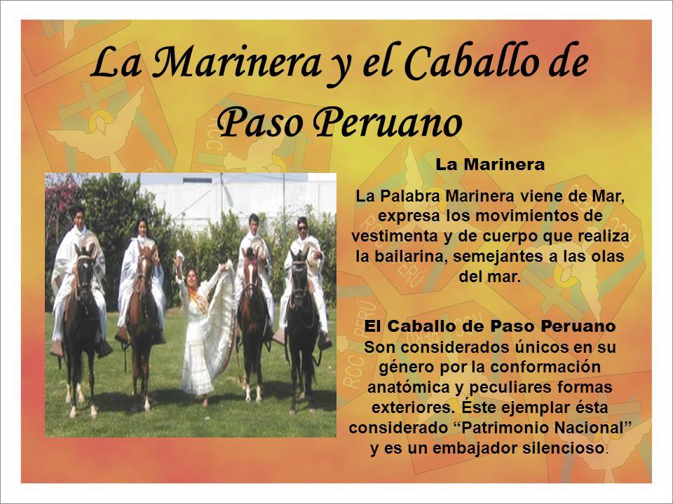 La Marinera y el Caballo de Paso Peruano La Marinera La Palabra Marinera viene de Mar, expresa los movimientos de vestimenta y de cuerpo que realiza l