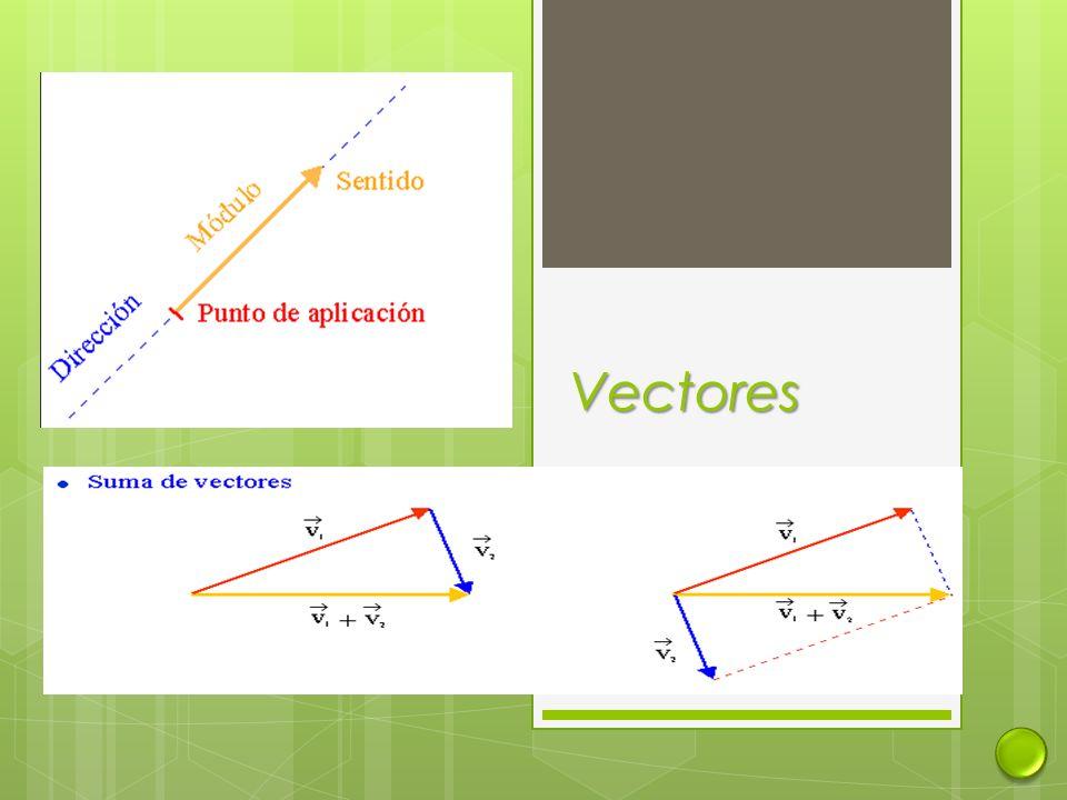 c La única aceleración es la gravedad y esta es vertical.
