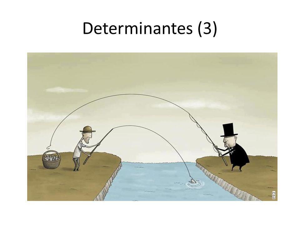 Determinantes (3)