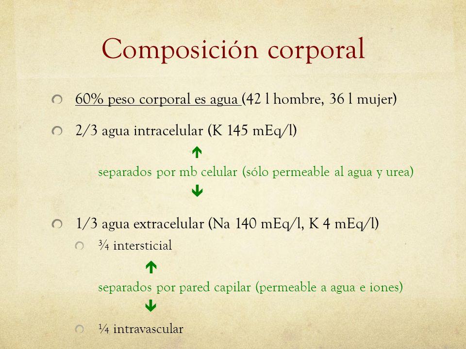 Composición corporal 60% peso corporal es agua (42 l hombre, 36 l mujer) 2/3 agua intracelular (K 145 mEq/l) separados por mb celular (sólo permeable