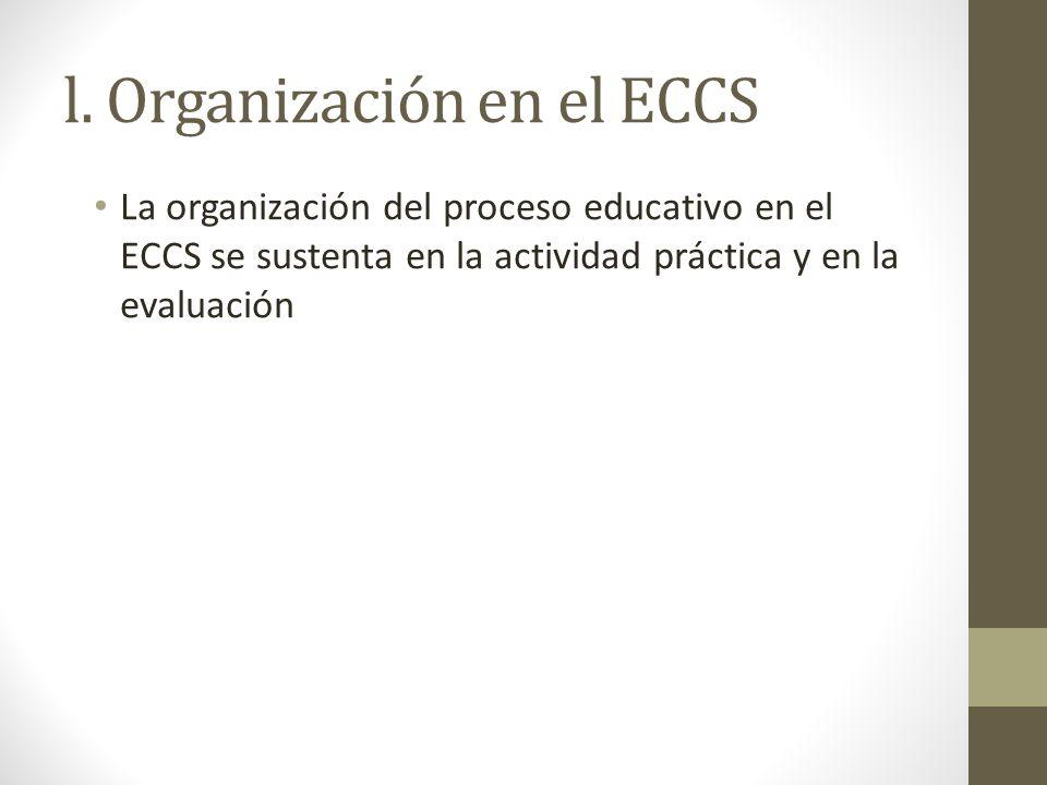 l. Organización en el ECCS La organización del proceso educativo en el ECCS se sustenta en la actividad práctica y en la evaluación