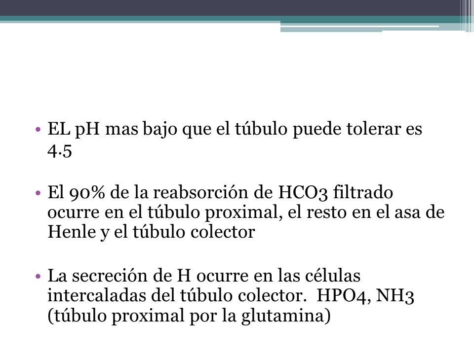 EL pH mas bajo que el túbulo puede tolerar es 4.5 El 90% de la reabsorción de HCO3 filtrado ocurre en el túbulo proximal, el resto en el asa de Henle