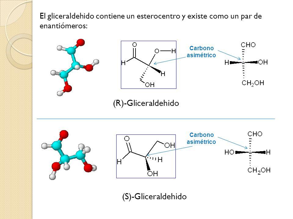 El gliceraldehido contiene un esterocentro y existe como un par de enantiómeros: (R)-Gliceraldehido (S)-Gliceraldehido Carbono asimétrico Carbono asim