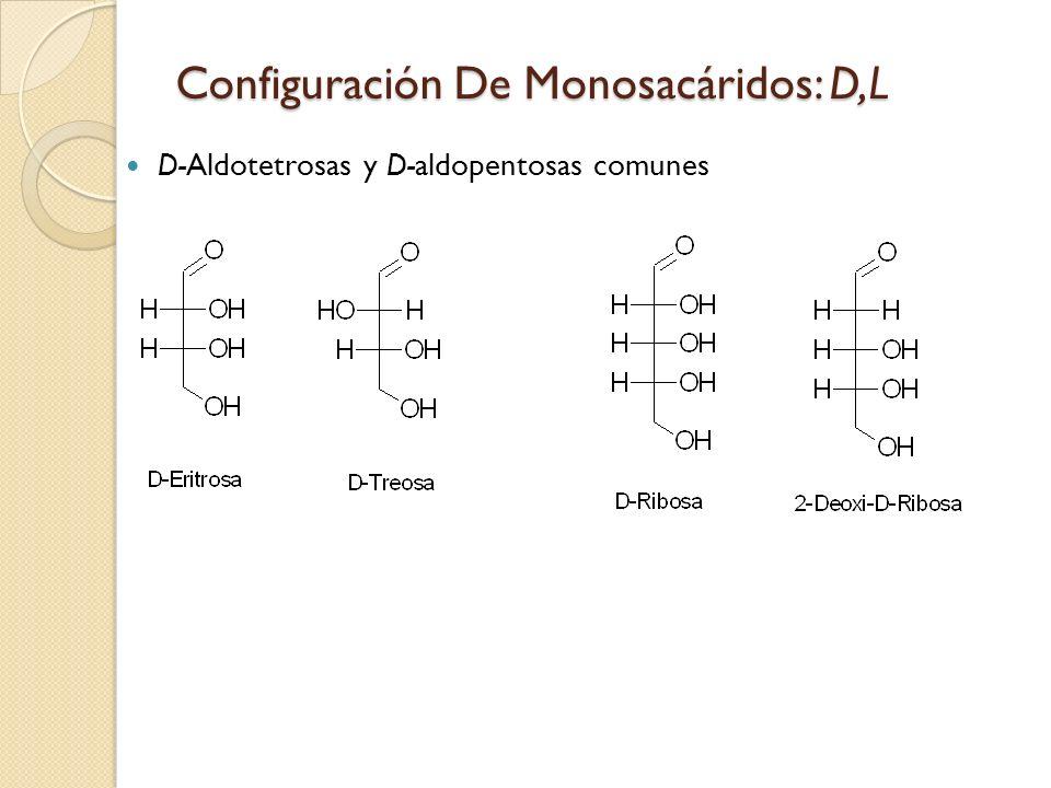 Configuración De Monosacáridos: D,L D-Aldotetrosas y D-aldopentosas comunes