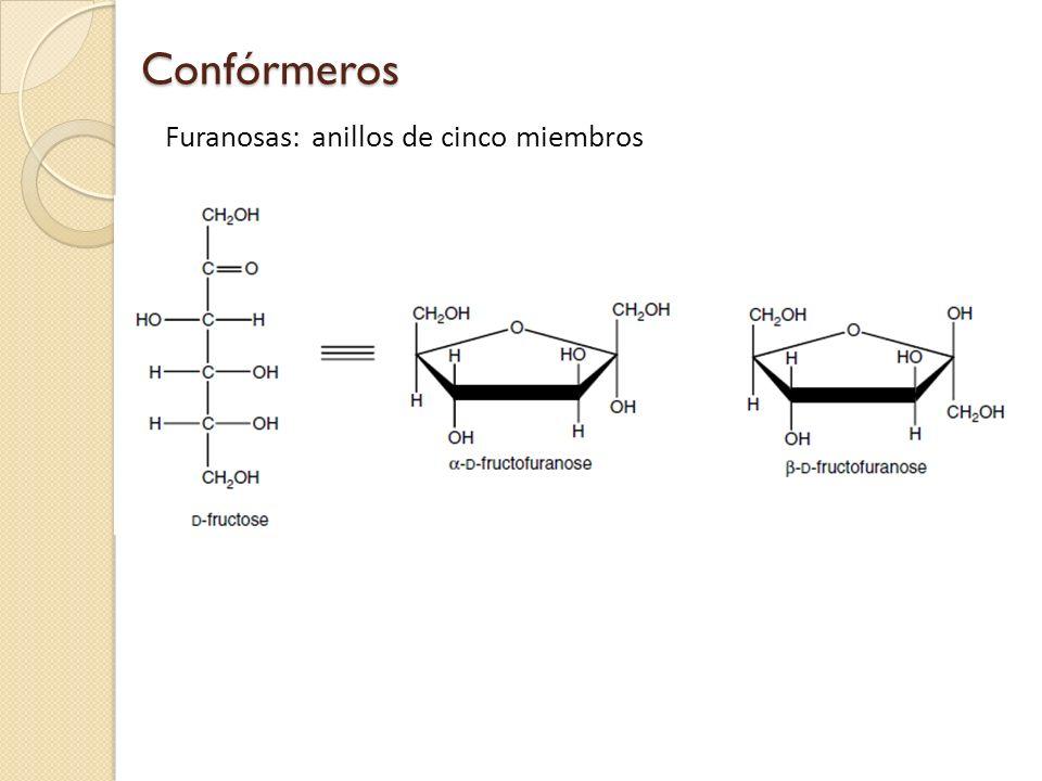 Confórmeros Furanosas: anillos de cinco miembros