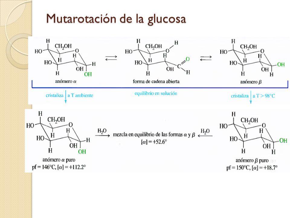 Mutarotación de la glucosa