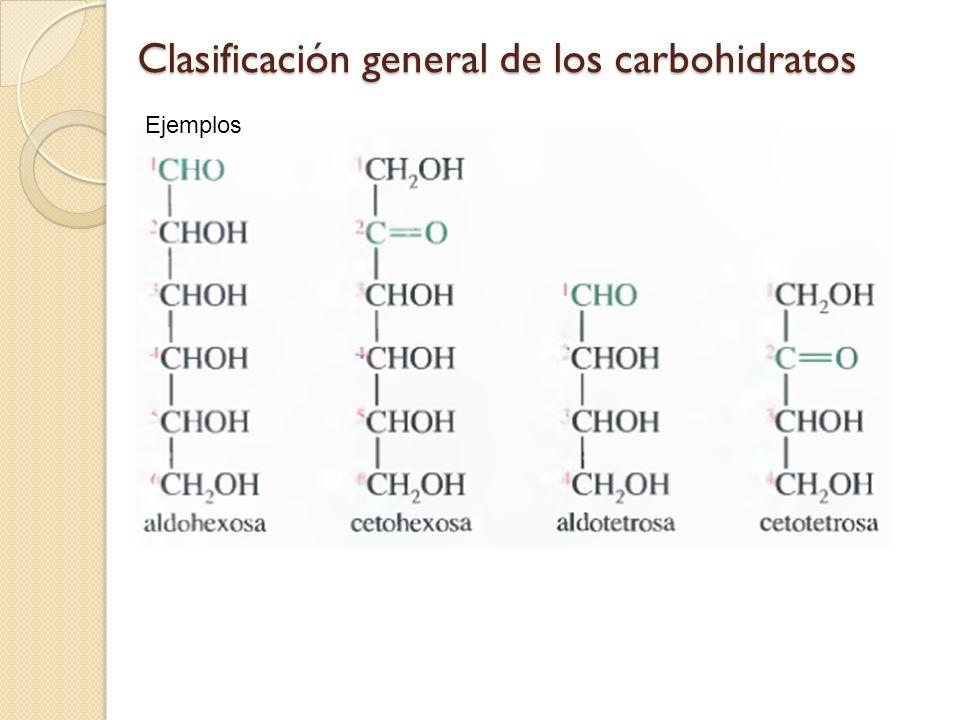 Clasificación general de los carbohidratos Ejemplos
