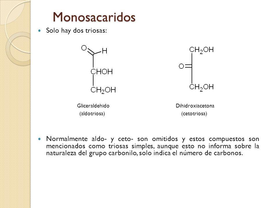 Monosacaridos Solo hay dos triosas: Gliceraldehido Dihidroxiacetona (aldotriosa) (cetotriosa) Normalmente aldo- y ceto- son omitidos y estos compuestos son mencionados como triosas simples, aunque esto no informa sobre la naturaleza del grupo carbonilo, solo indica el número de carbonos.