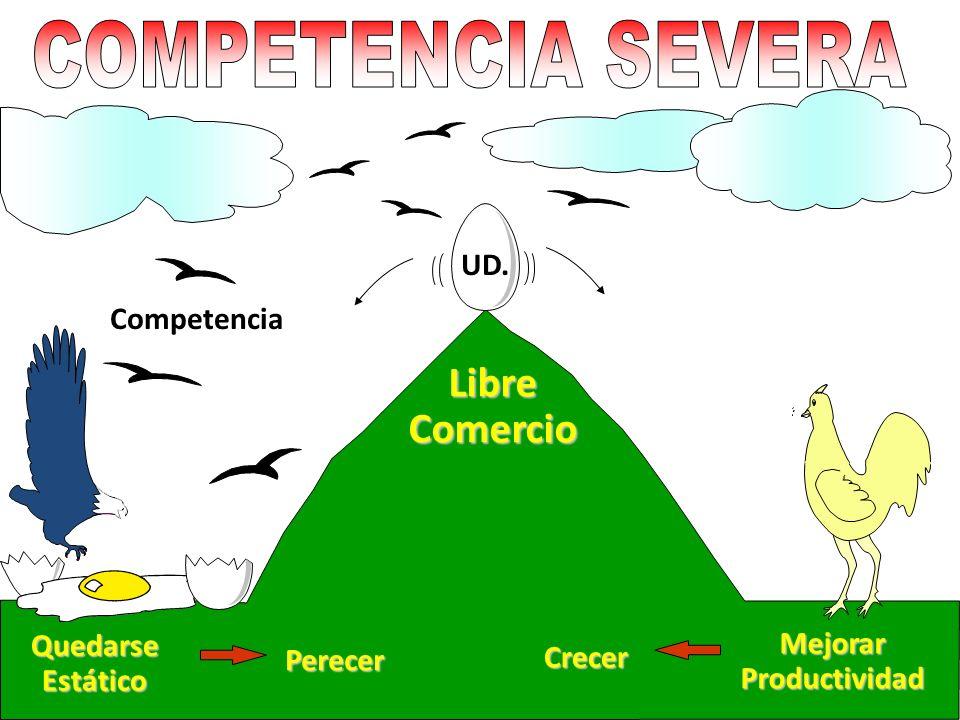 Competencia Quedarse Estático Libre Comercio Crecer Perecer MejorarProductividad UD.