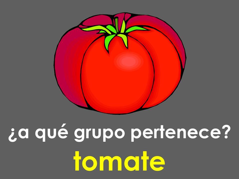 ¿a qué grupo pertenece? tomate