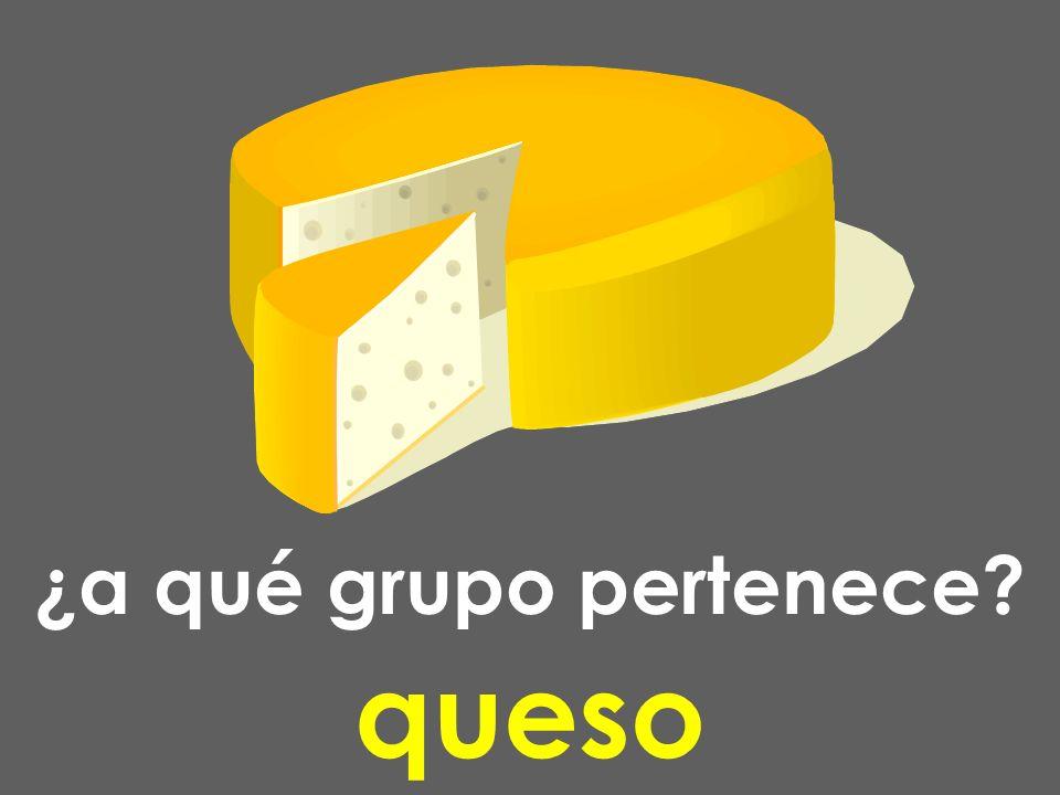 ¿a qué grupo pertenece? queso