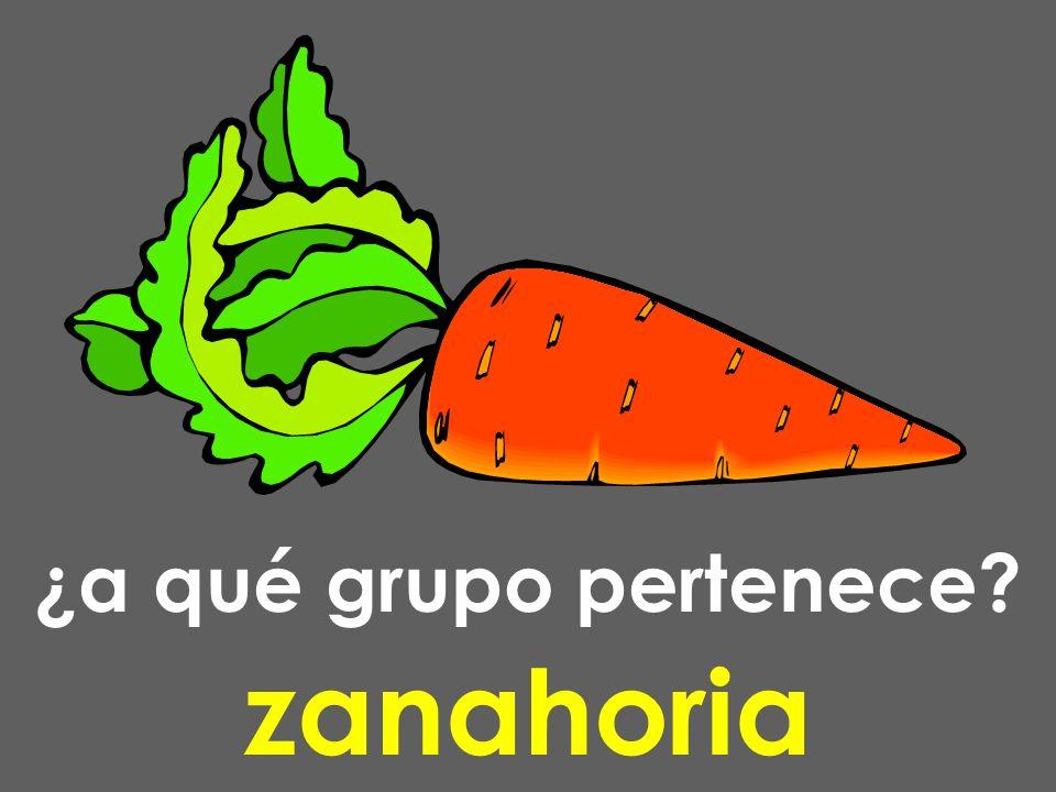 ¿a qué grupo pertenece? zanahoria