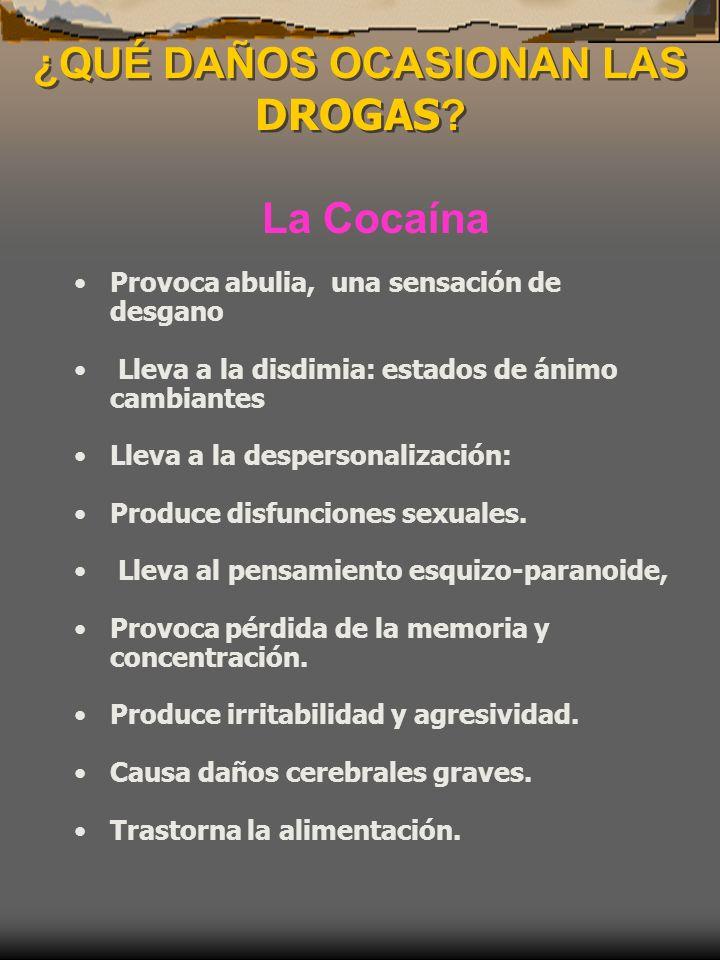 ¿QUÉ DAÑOS OCASIONAN LAS DROGAS ? La Cocaína Provoca abulia, una sensación de desgano Lleva a la disdimia: estados de ánimo cambiantes Lleva a la desp