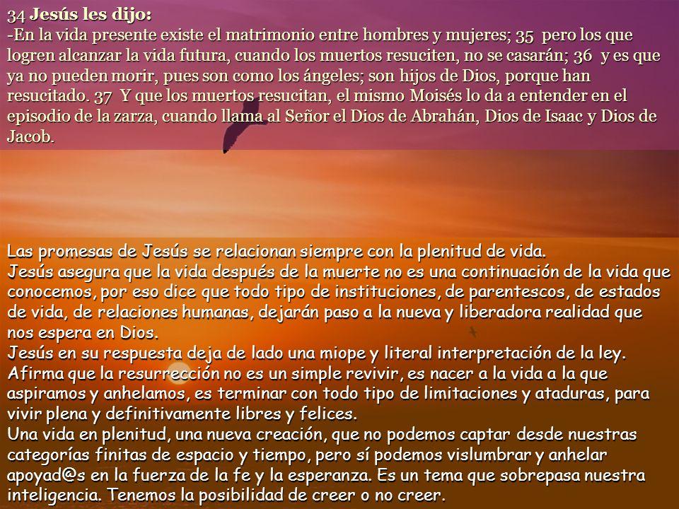 www.vitanoblepowerpoints.net 28 Maestro, Moisés nos dejó escrito: Si el hermano de uno muere dejando mujer sin hijos, su hermano debe casarse con la mujer para dar descendencia a su hermano.