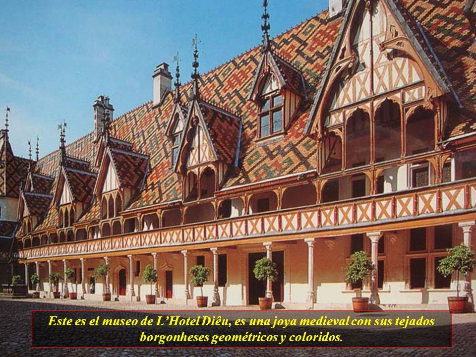 Es otra ciudad encantadora de Francia. El casco antiguo esta dentro de las murallas y barandillas. Su tesoro es el Hotel Dieu u Hospicio de Beaune.
