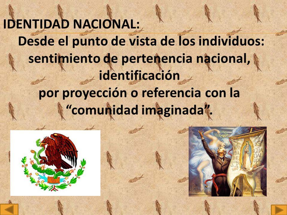 IDENTIDAD NACIONAL: Desde el punto de vista de los individuos: sentimiento de pertenencia nacional, identificación por proyección o referencia con la comunidad imaginada.