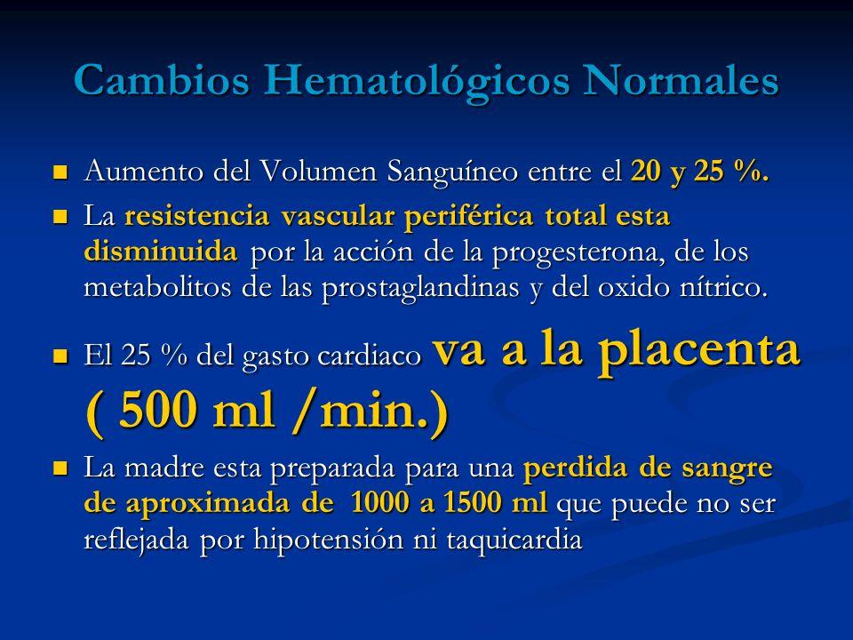 Cambios Hematológicos Normales Aumento del Volumen Sanguíneo entre el 20 y 25 %. Aumento del Volumen Sanguíneo entre el 20 y 25 %. La resistencia vasc
