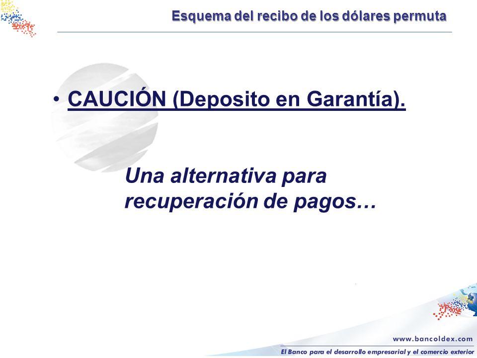 CAUCIÓN (Deposito en Garantía).
