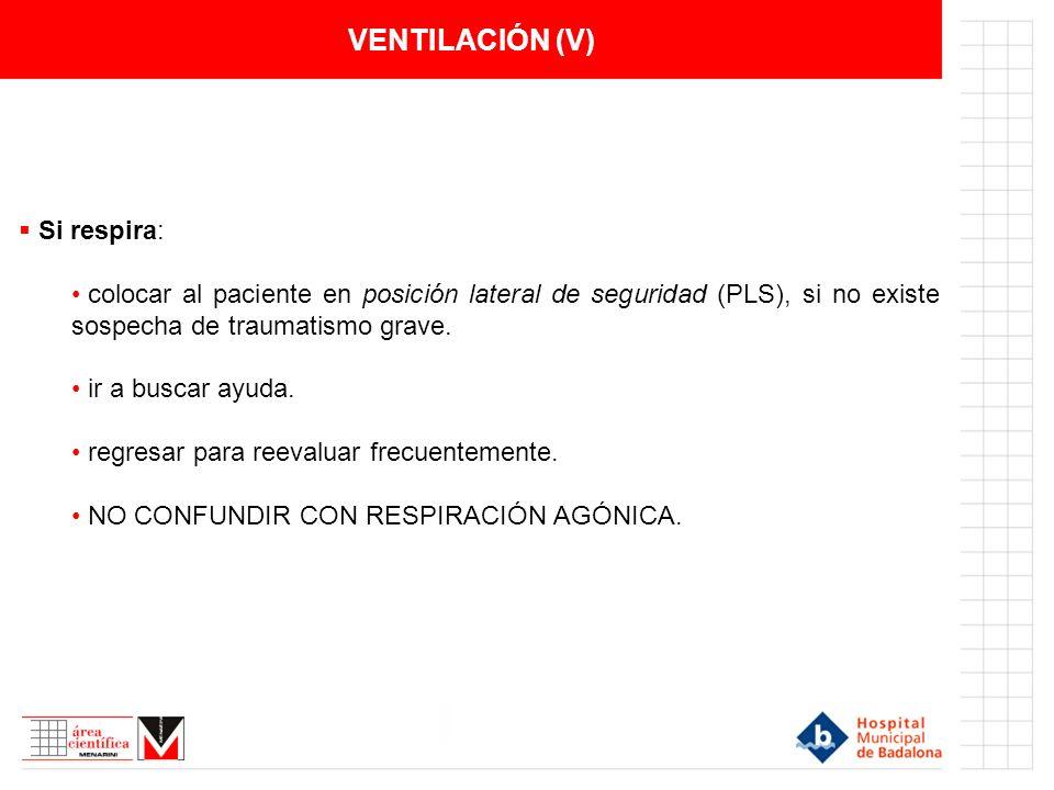 VENTILACIÓN (V) Si respira: colocar al paciente en posición lateral de seguridad (PLS), si no existe sospecha de traumatismo grave. ir a buscar ayuda.