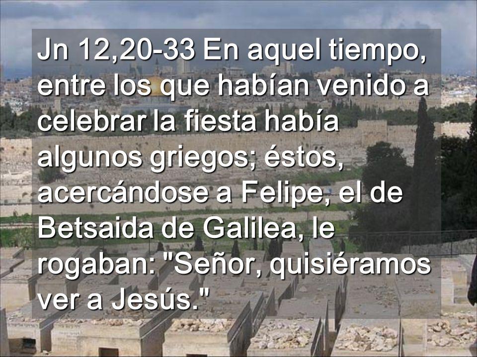 Valle del Cedron que Jesús atravesó Aprendió, sufriendo, a obedecer (2ª lectura)