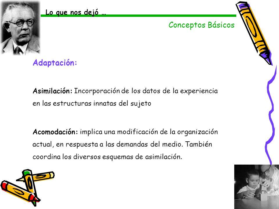 Adaptación: Asimilación: Incorporación de los datos de la experiencia en las estructuras innatas del sujeto Acomodación: implica una modificación de l