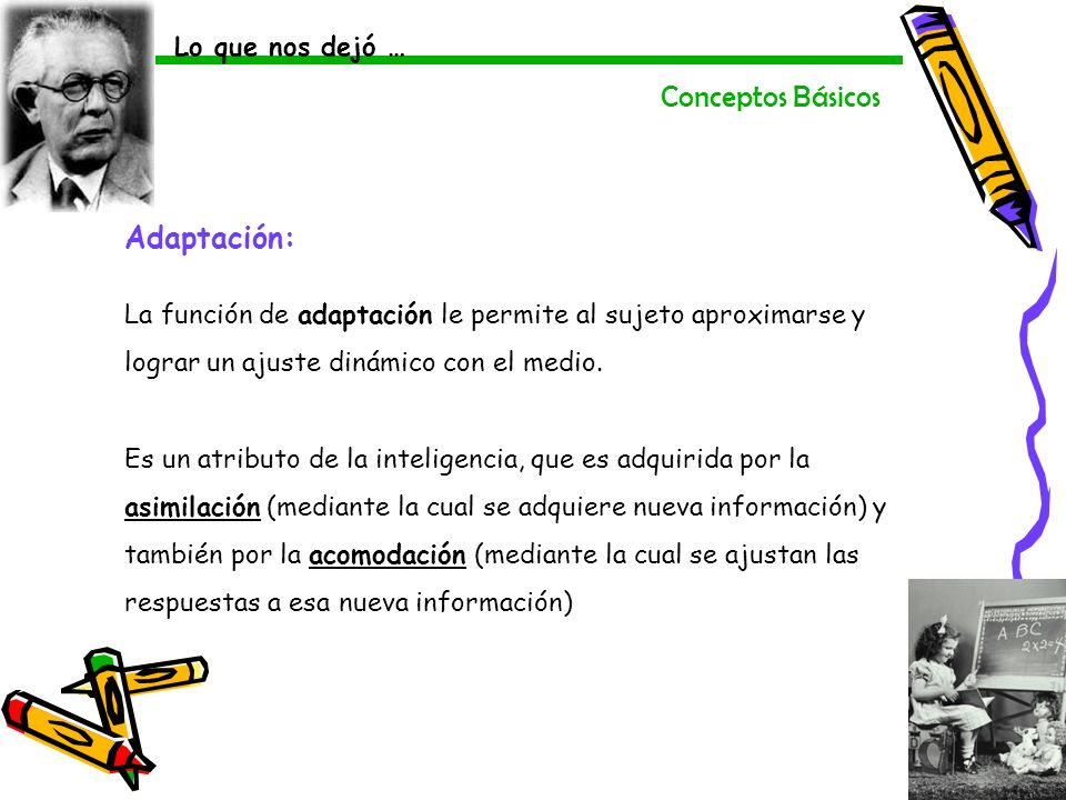 Conceptos Básicos Adaptación: La función de adaptación le permite al sujeto aproximarse y lograr un ajuste dinámico con el medio. Es un atributo de la