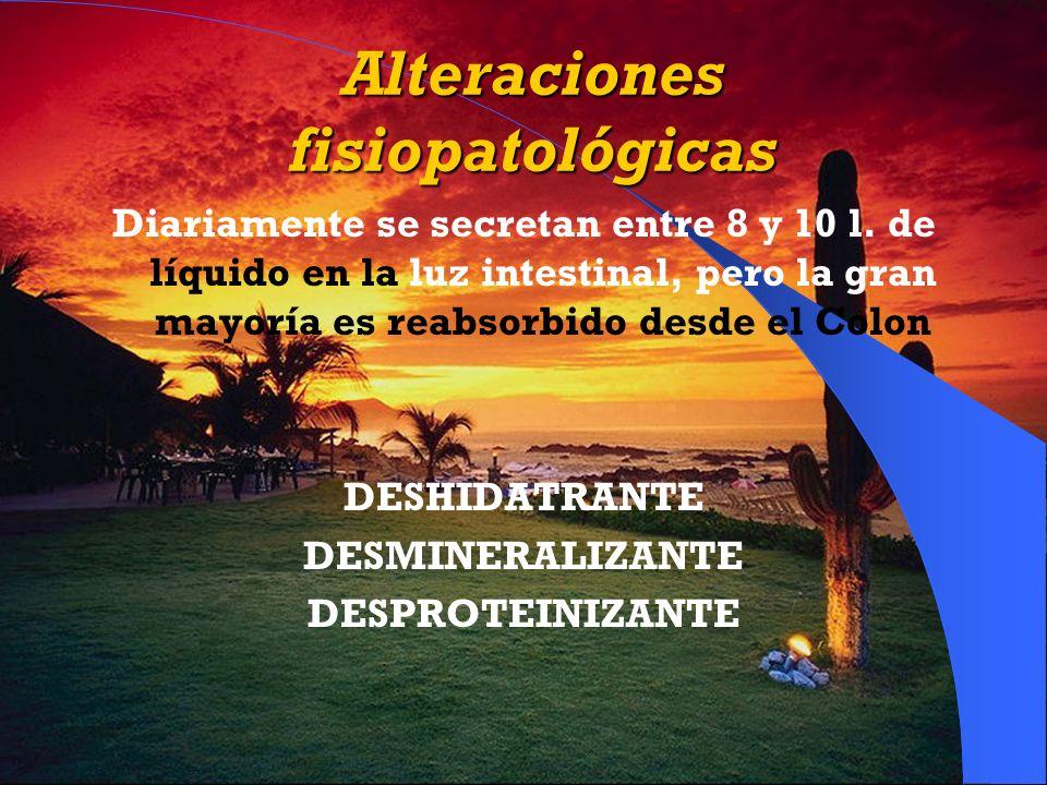Alteraciones fisiopatológicas Diariamente se secretan entre 8 y 10 l. de líquido en la luz intestinal, pero la gran mayoría es reabsorbido desde el Co