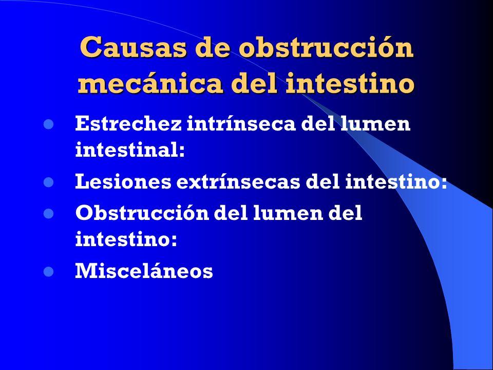 Causas de obstrucción mecánica del intestino Estrechez intrínseca del lumen intestinal: Lesiones extrínsecas del intestino: Obstrucción del lumen del