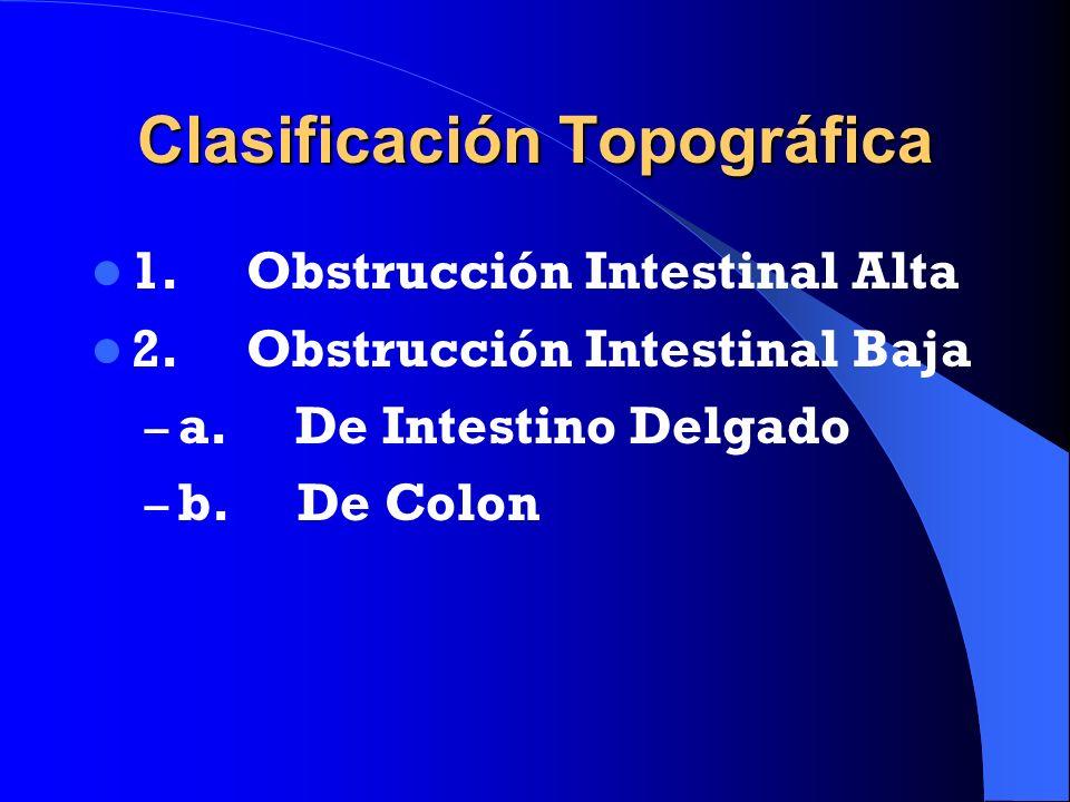Clasificación Topográfica 1. Obstrucción Intestinal Alta 2. Obstrucción Intestinal Baja – a. De Intestino Delgado – b. De Colon