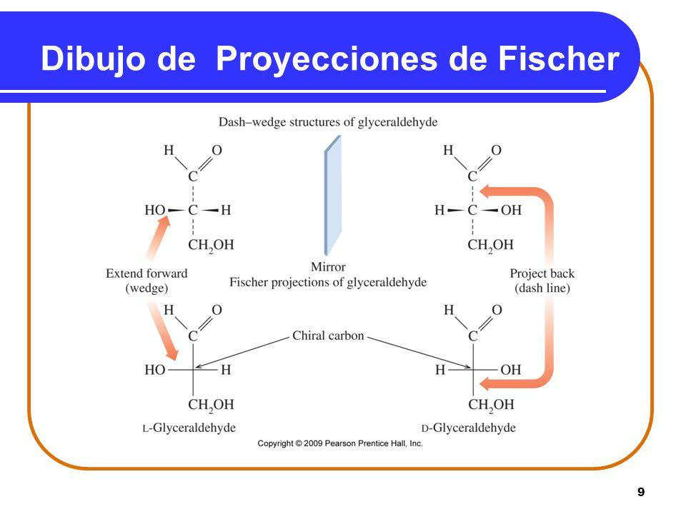 9 Dibujo de Proyecciones de Fischer