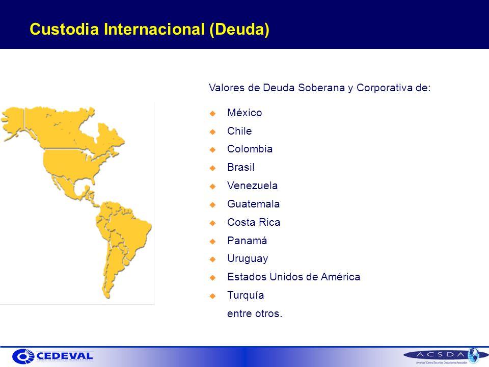 Valores de Deuda Soberana y Corporativa de: México Chile Colombia Brasil Venezuela Guatemala Costa Rica Panamá Uruguay Estados Unidos de América Turquía entre otros.