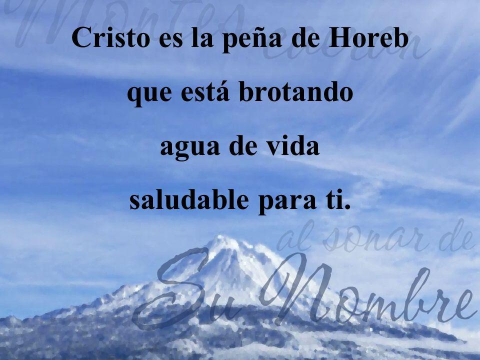 2.Cristo es el lirio del valle de las flores; Él es la rosa blanca y pura de Sarón.