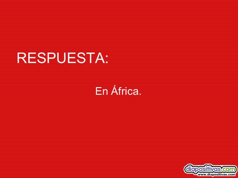 RESPUESTA: En África.