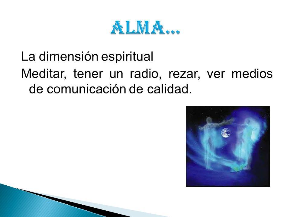 La dimensión espiritual Meditar, tener un radio, rezar, ver medios de comunicación de calidad.
