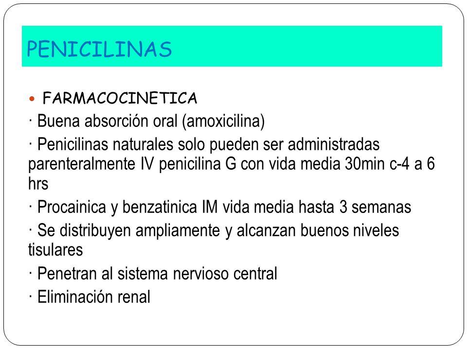 PENICILINAS FARMACOCINETICA · Buena absorción oral (amoxicilina) · Penicilinas naturales solo pueden ser administradas parenteralmente IV penicilina G