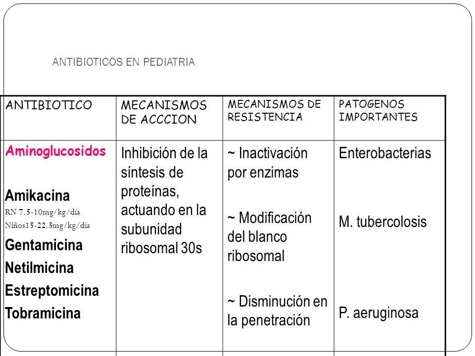 ANTIBIOTICOS EN PEDIATRIA ANTIBIOTICOMECANISMOS DE ACCCION MECANISMOS DE RESISTENCIA PATOGENOS IMPORTANTES Aminoglucosidos Amikacina RN 7.5-10mg/kg/dí
