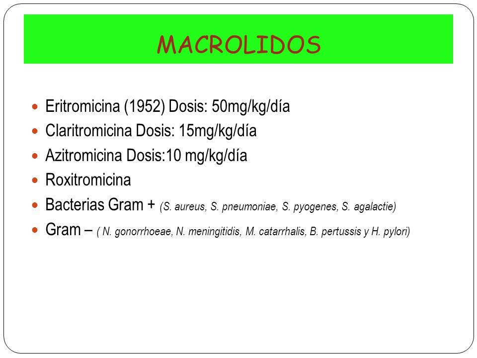 MACROLIDOS Eritromicina (1952) Dosis: 50mg/kg/día Claritromicina Dosis: 15mg/kg/día Azitromicina Dosis:10 mg/kg/día Roxitromicina Bacterias Gram + (S.