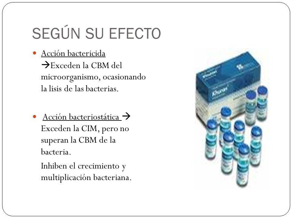 SEGÚN SU EFECTO Acción bactericida Exceden la CBM del microorganismo, ocasionando la lisis de las bacterias. Acción bacteriostática Exceden la CIM, pe