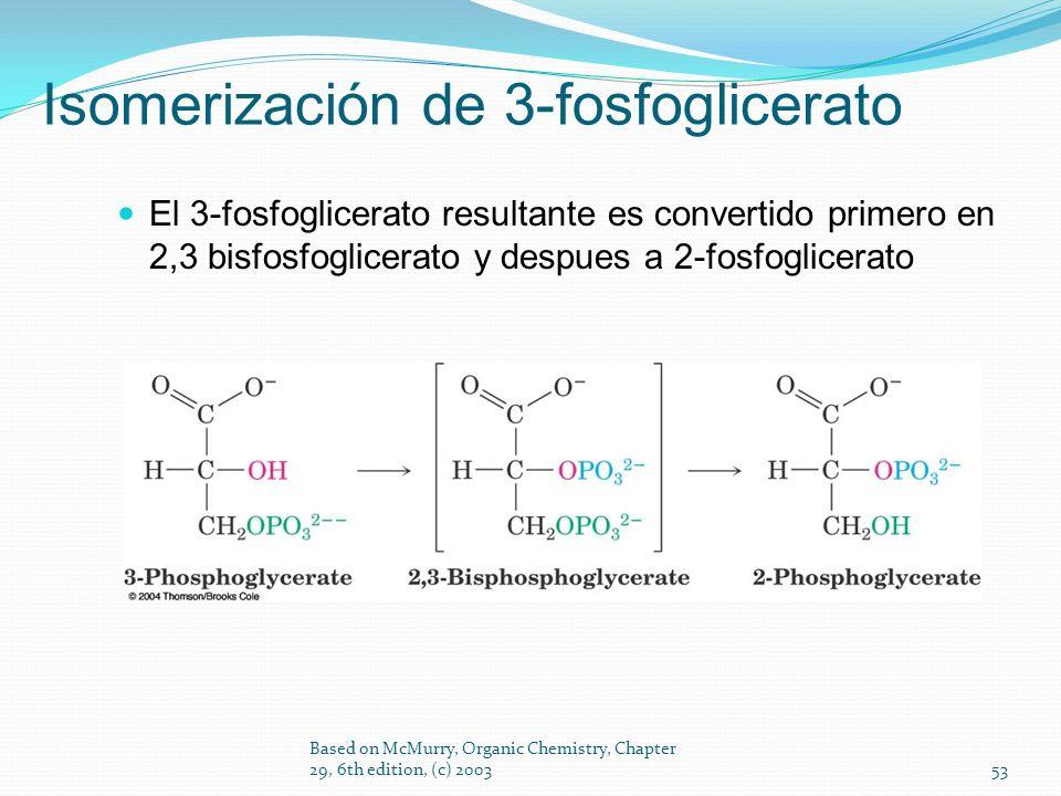 El 3-fosfoglicerato resultante es convertido primero en 2,3 bisfosfoglicerato y despues a 2-fosfoglicerato Based on McMurry, Organic Chemistry, Chapte
