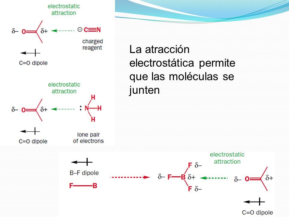 La carga positiva en el átomo de nitrógeno del anillo de piridina.