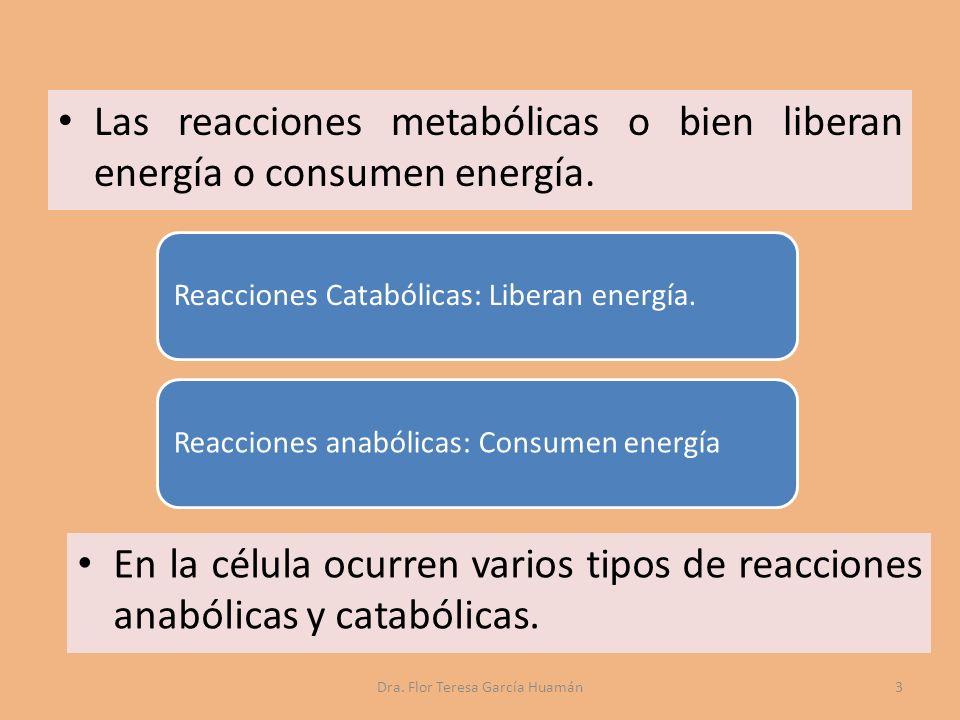 Las reacciones metabólicas o bien liberan energía o consumen energía.