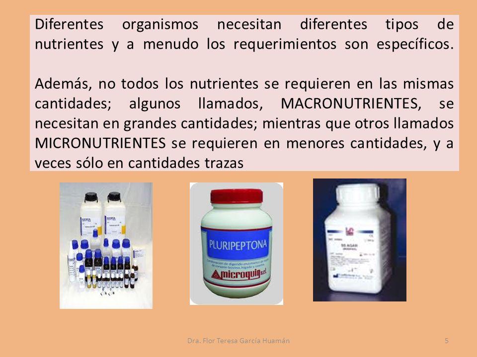 Diferentes organismos necesitan diferentes tipos de nutrientes y a menudo los requerimientos son específicos.