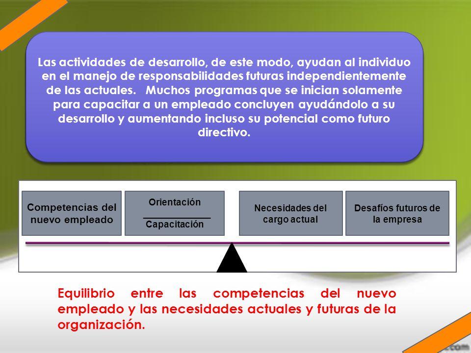 Las actividades de desarrollo, de este modo, ayudan al individuo en el manejo de responsabilidades futuras independientemente de las actuales. Muchos