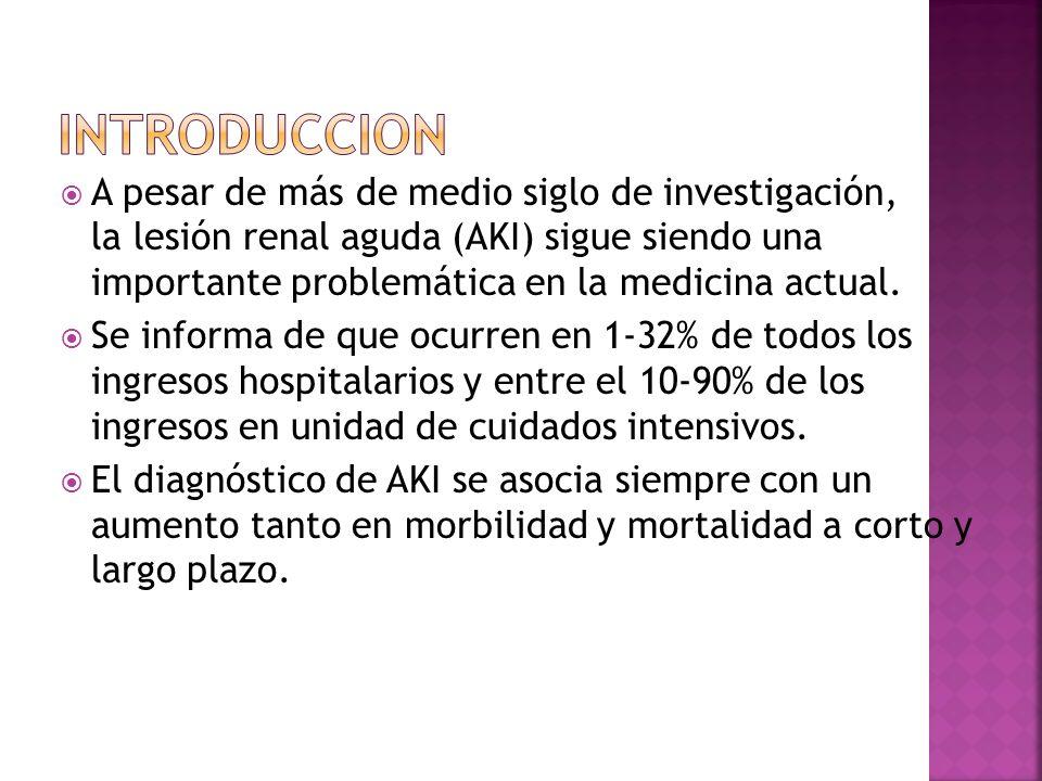 A pesar de más de medio siglo de investigación, la lesión renal aguda (AKI) sigue siendo una importante problemática en la medicina actual. Se informa
