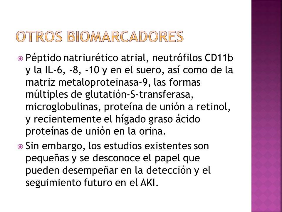 Péptido natriurético atrial, neutrófilos CD11b y la IL-6, -8, -10 y en el suero, así como de la matriz metaloproteinasa-9, las formas múltiples de glu